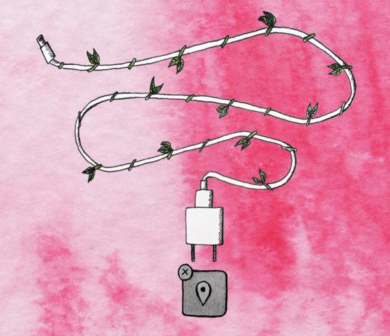 hack blossom aurora lady